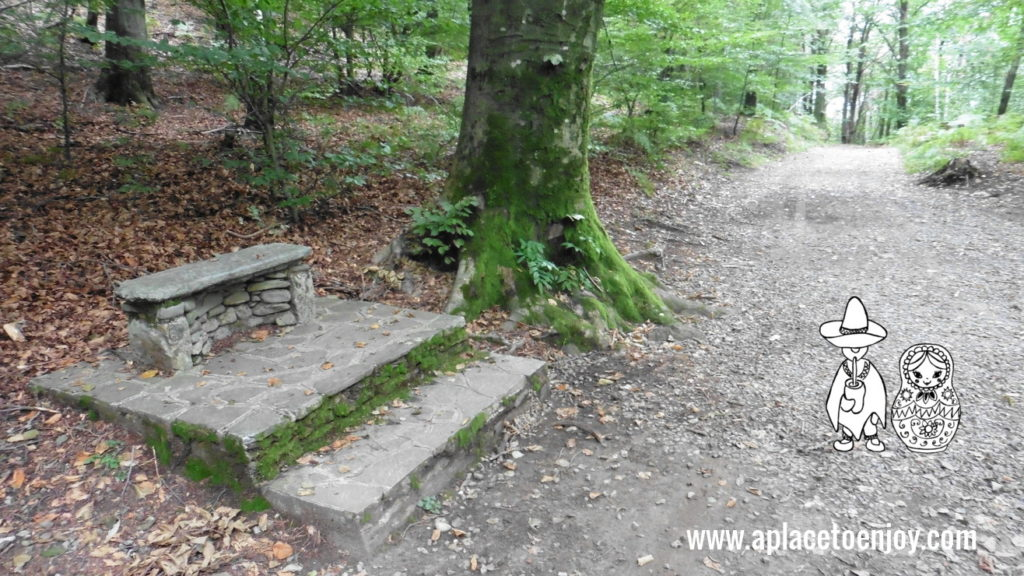 Bench in forest of Agra, Italy