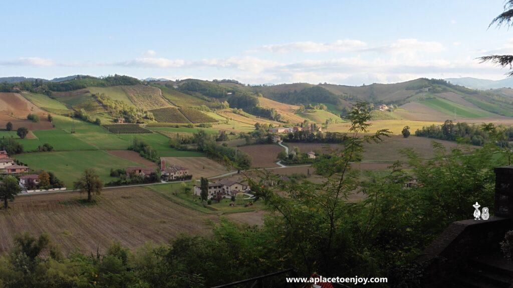 Виноградники в Colli Piacentini (холмы Пьяченцы)