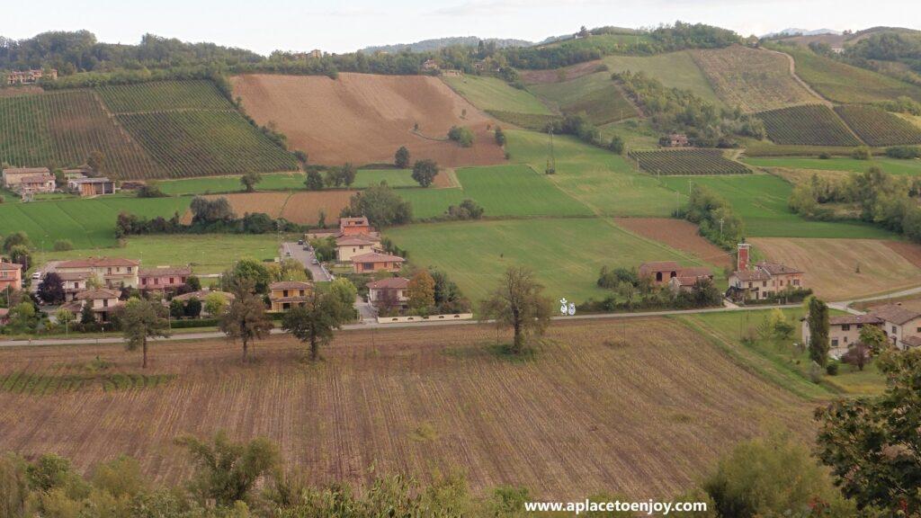 Wineyards of Colli Piacentini (Piacenza Hills)